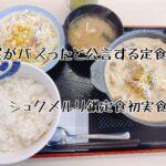 【松屋】がバズったと公言!復刻総選挙で1位になったシュクメルリ鍋定食を初実食!