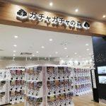 ガチャガチャだらけでカオス!東日本最大のカプセルトイ専門店「ガチャガチャの森」【名取市】