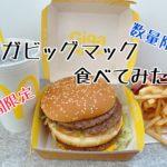 """【マクドナルド】Big Macの4倍?!期間・数量限定の"""" Giga Big Mac""""を食べてみた!"""